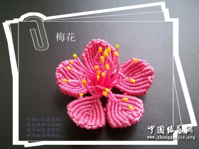 中国结论坛 梅花--教程(适合有点基础的人)  立体绳结教程与交流区 110524202167037fdcc4e35ede