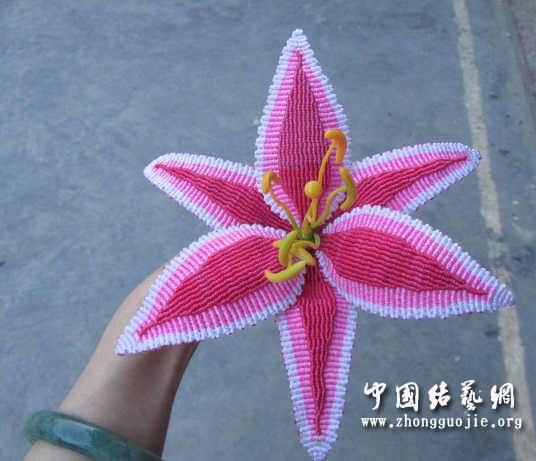 中国结论坛 原创------粉色渐变香水百合  立体绳结教程与交流区 015939g6l6jm6f0yry7r6z