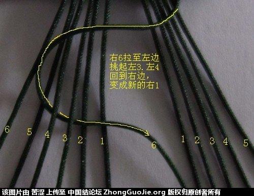 中国结论坛 徒手12股编 教程  图文教程区 232724sbyzfjxkfjbtjifs