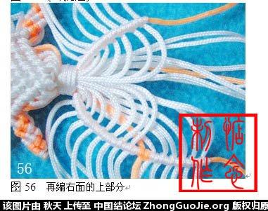 中国结论坛 小金鱼的编法图文教程(惦念)  立体绳结教程与交流区 083123vw2yvd99ze3z4bd9