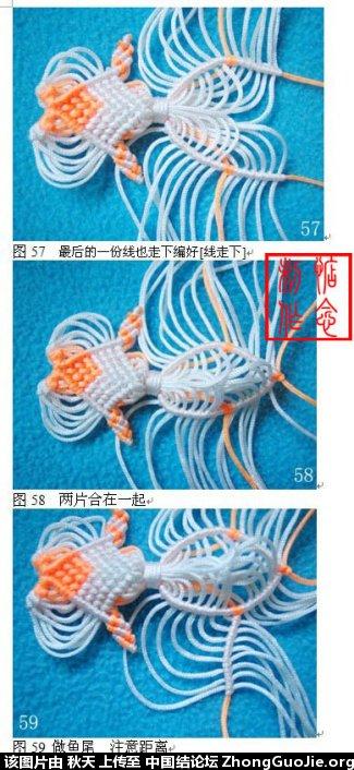 中国结论坛 小金鱼的编法图文教程(惦念)  立体绳结教程与交流区 083126yiaitehexhxix35t