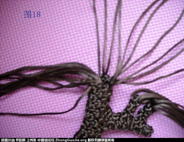 中国结论坛 梅花树干的制作过程  立体绳结教程与交流区 112541zrgnnirdtgyinrov
