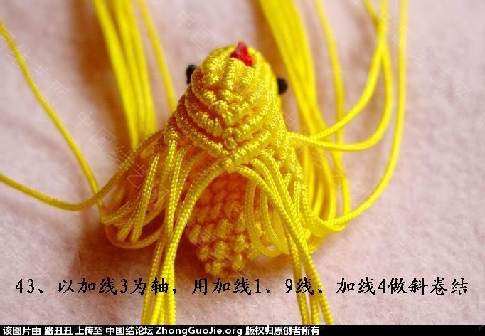 中国结论坛 路丑丑原创结艺教程-----小鸡(下)  立体绳结教程与交流区 165539kzijs5k5iylikjh5