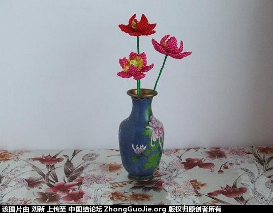 中国结论坛 莲花 莲花 作品展示 110743bkzdvuuubzufoy7j