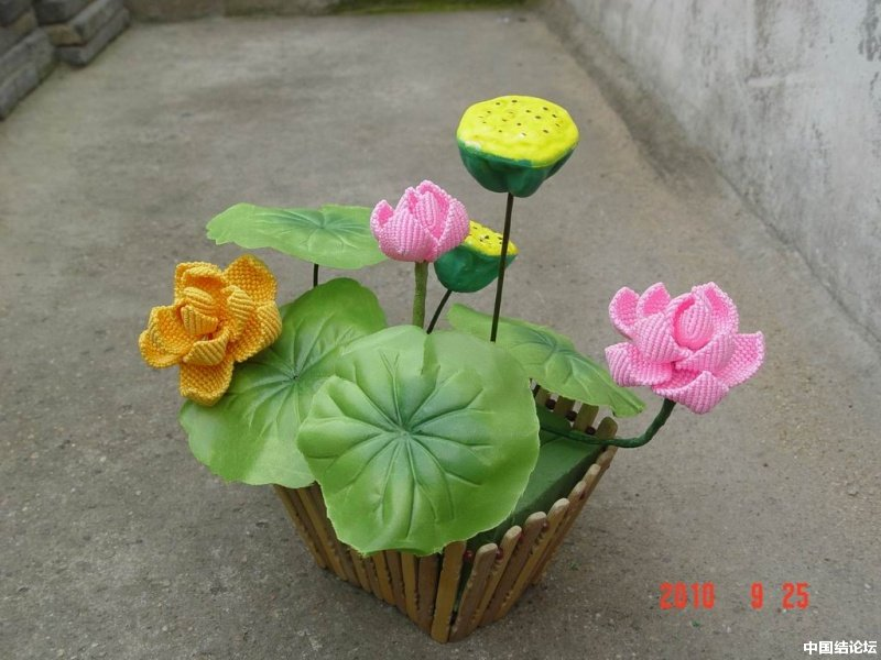 中国结论坛 我编的莲花 莲花 作品展示 165226glln7ozn224uoelo