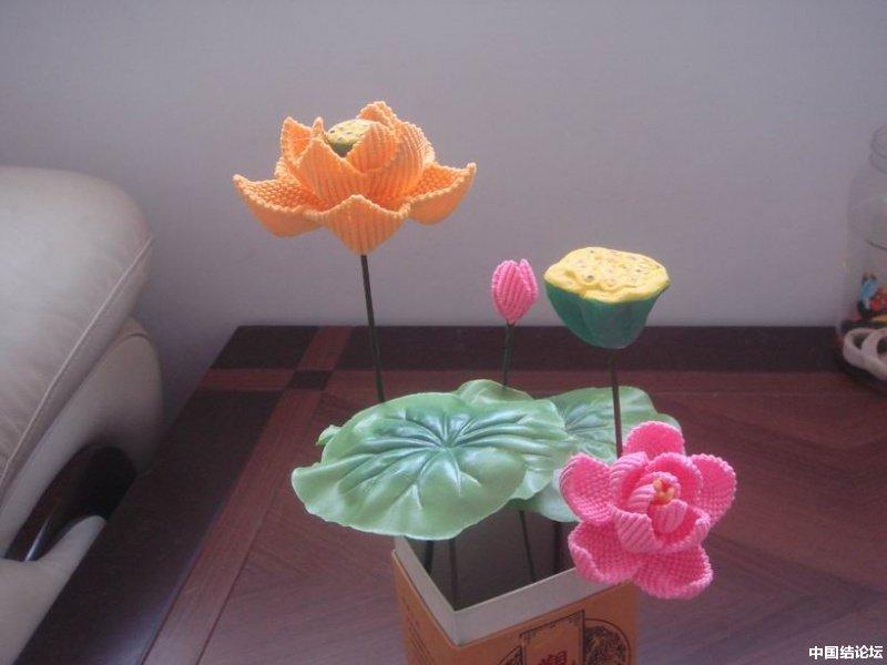 中国结论坛 我编的莲花 莲花 作品展示 165448lxf5dkjpgp6kr3kk