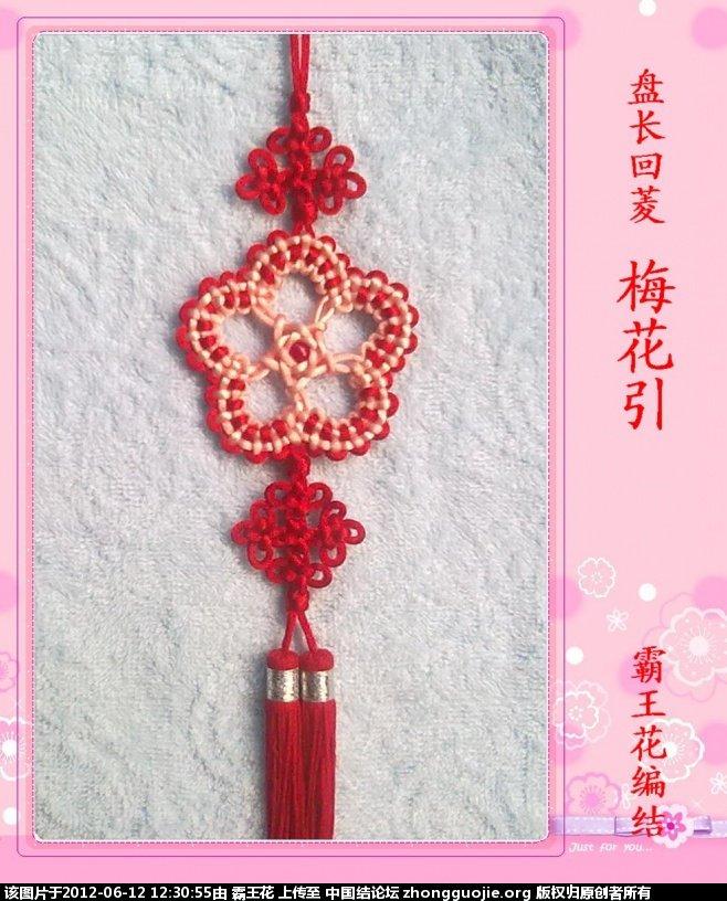 中国结论坛 特别的礼物--注册学结一周年  作品展示 122444u0c2v4r0mibdy22m