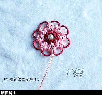 中国结论坛 花贴  兰亭结艺 161318jenvsjijaap5n647