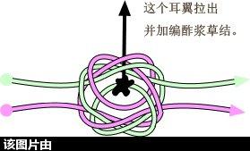 中国结论坛 轴冰花另一种穿轴方法  兰亭结艺 121928bx0lslsq4xbbggef