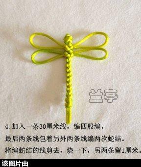中国结论坛 小蜻蜓(初级) 蜻蜓 兰亭结艺 1011326dsprzpd9pr6pdsd