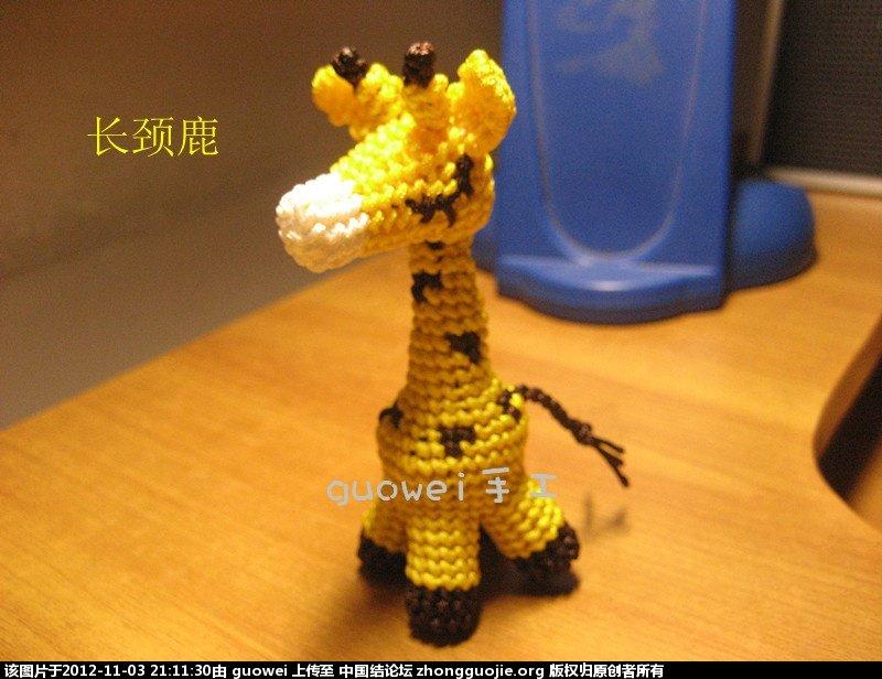 11.3长颈鹿.jpg