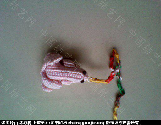 中国结论坛 再秀我编的青蛙 用青蛙编一个小故事,长气球编青蛙,斜卷结编青蛙,青蛙在荷叶上 作品展示 183312kirbz7919b9r1ci0