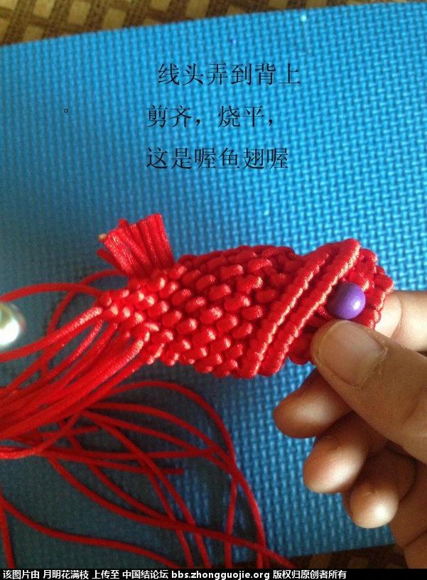 中国结论坛 吉庆有鱼  立体绳结教程与交流区 132856wcmv477v9yqcacct