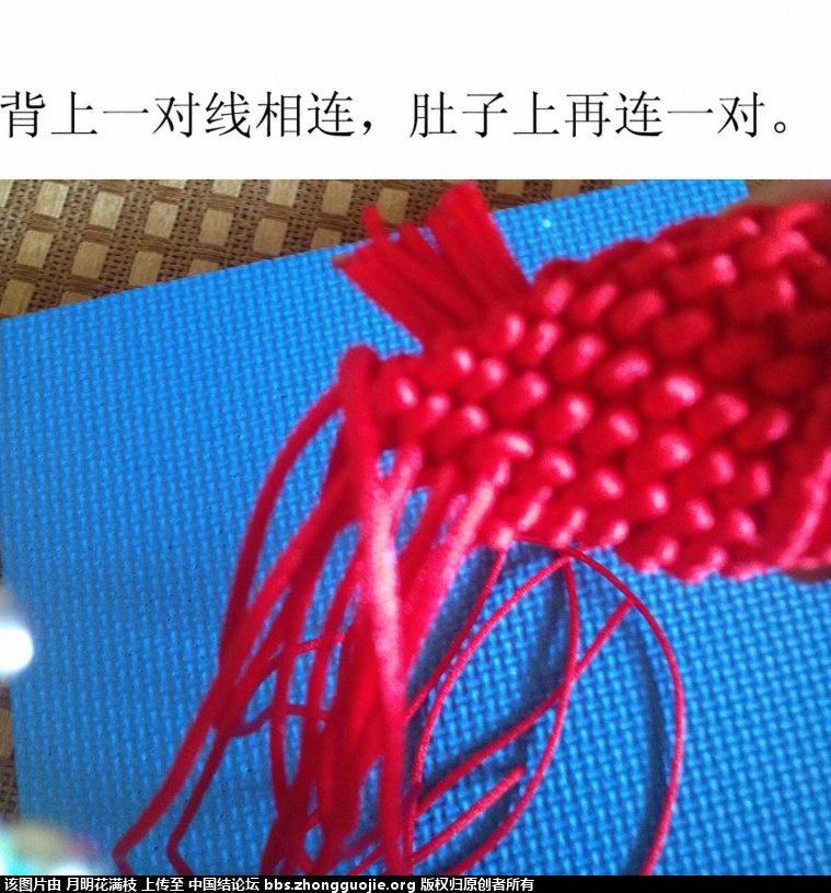 中国结论坛 吉庆有鱼  立体绳结教程与交流区 132858ge7a7y644iss4f4q