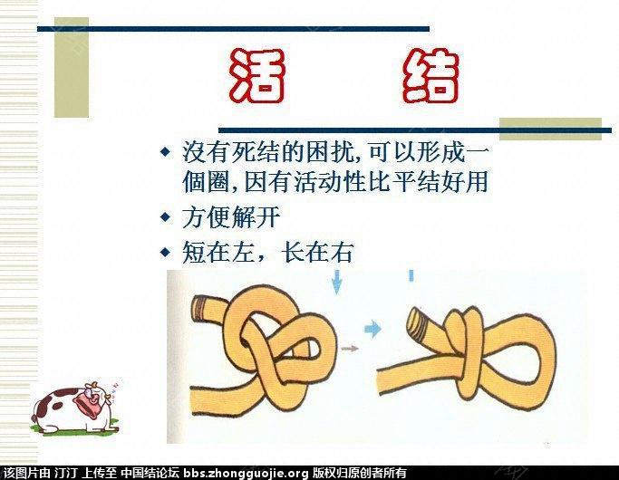 中国结论坛 生活与绳结 编绳结大全,绳结的种类,绳结的打法,绳结手册,打绳结 图文教程区 1347170fwoa3owoawwi0oo