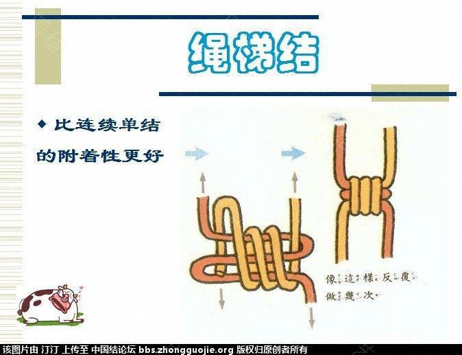 中国结论坛 生活与绳结 编绳结大全,绳结的种类,绳结的打法,绳结手册,打绳结 图文教程区 134718z79v6tpp4xp54pkp