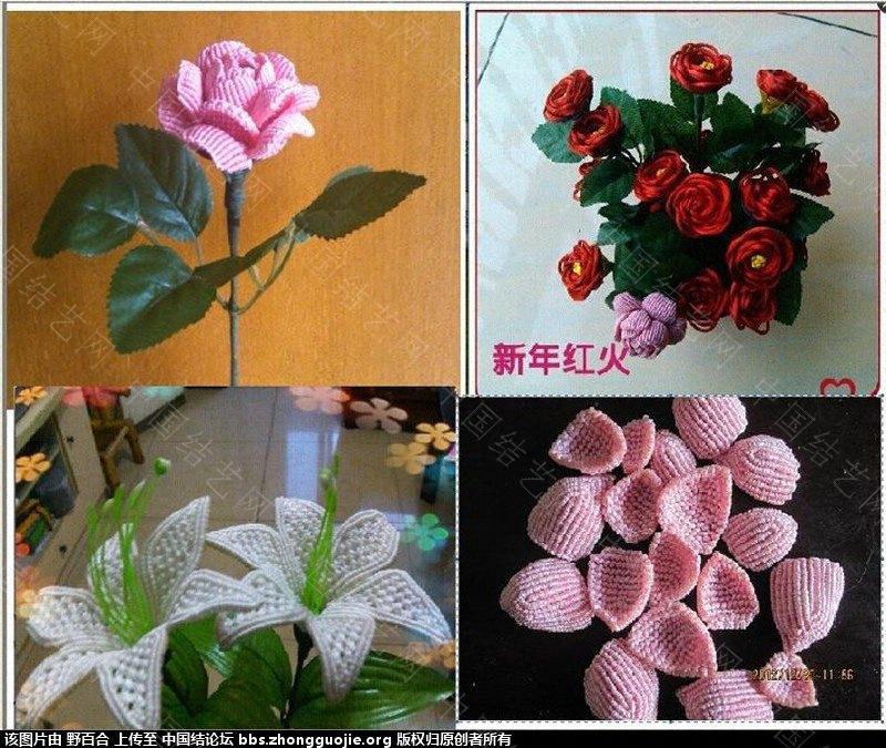中国结论坛 在论坛学习了几种花(增加一款风信子) 论坛,学习,学习了,了几,种花 作品展示 115009gccsvgpnspzgnssx
