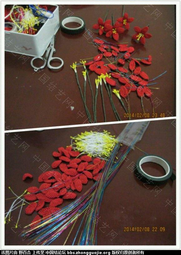 中国结论坛 在论坛学习了几种花(增加一款风信子) 论坛,学习,学习了,了几,种花 作品展示 093102piolnizlhl5amthz