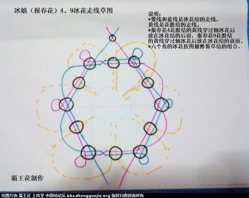 中国结论坛   冰花结(华瑶结)的教程与讨论区 1818557ghgfuu00b09u2zb