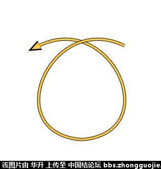 中国结论坛 七股六花ABABAB型分解图  基本结-新手入门必看 1707565qv66j4sjq4939qq
