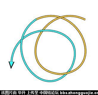 中国结论坛 七股六花ABABAB型分解图  基本结-新手入门必看 170757e0hjh366s02g200g