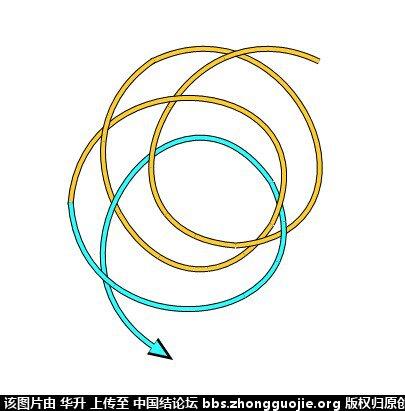 中国结论坛 七股六花ABABAB型分解图  基本结-新手入门必看 170758z002qnc7w902n02h
