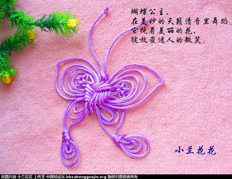 中国结论坛 小兰花花个人作品集 兰花花,作品集 作品展示 212957ggp5g8gpxjovzowu