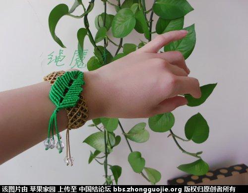 中国结论坛 苹果家园作品集二《手链  项链》 作品集,苹果,项链 作品展示 115246ovrbbseai4okolkv