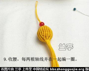 中国结论坛 小葫芦(补充图片) 图片,博客,记录 兰亭结艺 181818ecg45al2s1z1myrl