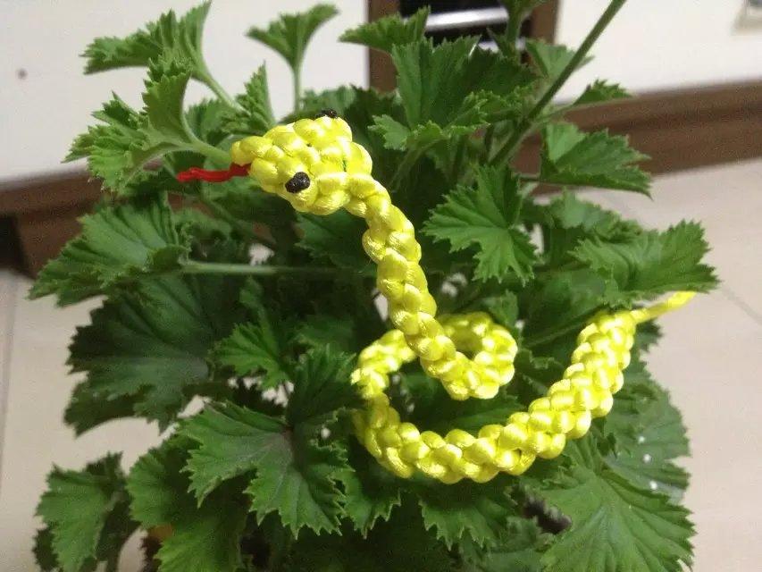 中国结论坛 学习兰亭老师的小包饰和小蛇,请多多指教 小包 作品展示 204004oca88acoceytitwt