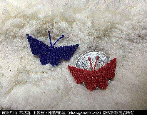 中国结论坛 蝴蝶  作品展示 090910p4ilff0yt1bl1yla