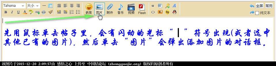 中国结论坛 【操作说明】主题帖子图片编辑操作 图片,主题 论坛使用帮助 020853eov2t50o2vah35hg