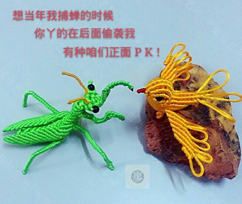 中国结论坛 螳螂  立体绳结教程与交流区 000604js5q8ijuiwsu2j55