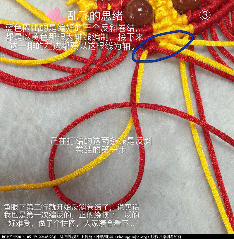 中国结论坛 小金鱼详细图解补充  立体绳结教程与交流区 224823btfk7koakwz7kthk