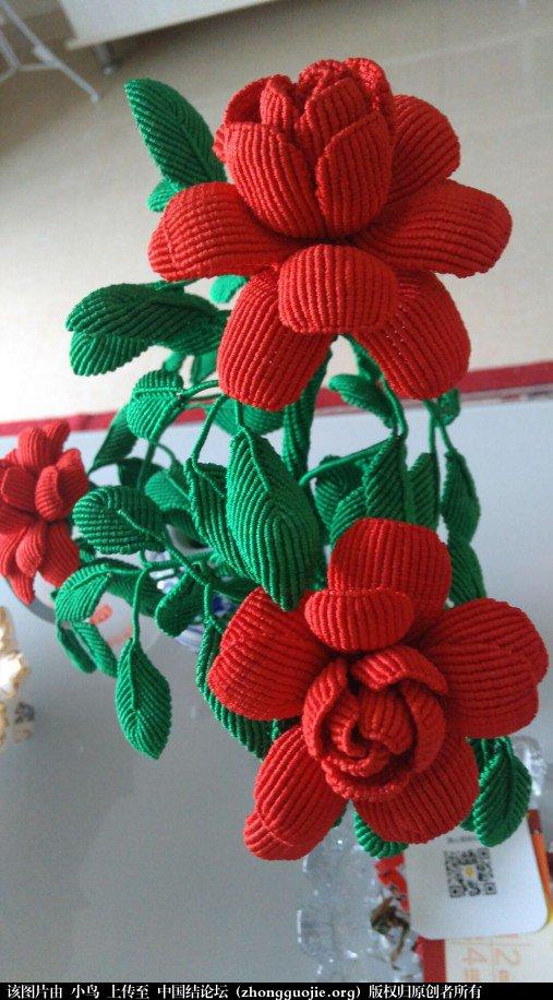 中国结论坛 花卉 花卉 作品展示 092503g6agak036jy8036w