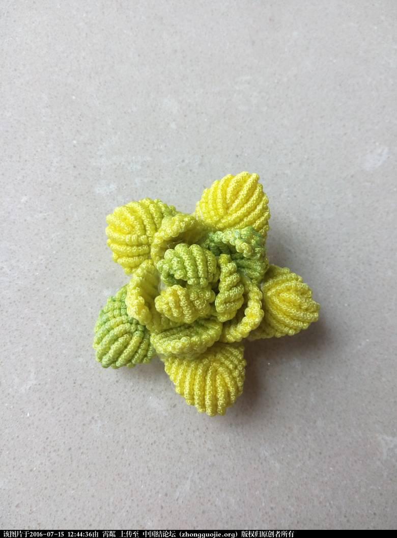 中国结论坛 失败的莲花  作品展示 124435tbwrnrk3g2ck3qtn