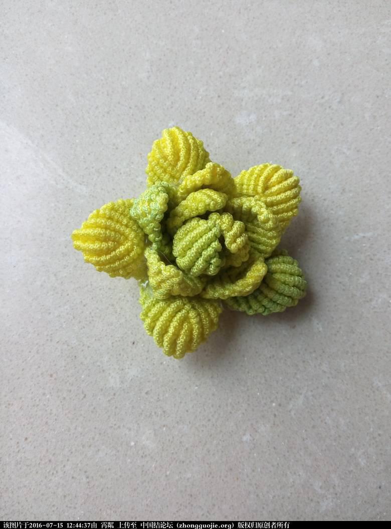 中国结论坛 失败的莲花  作品展示 124437du7yzrkazy1nk0j0