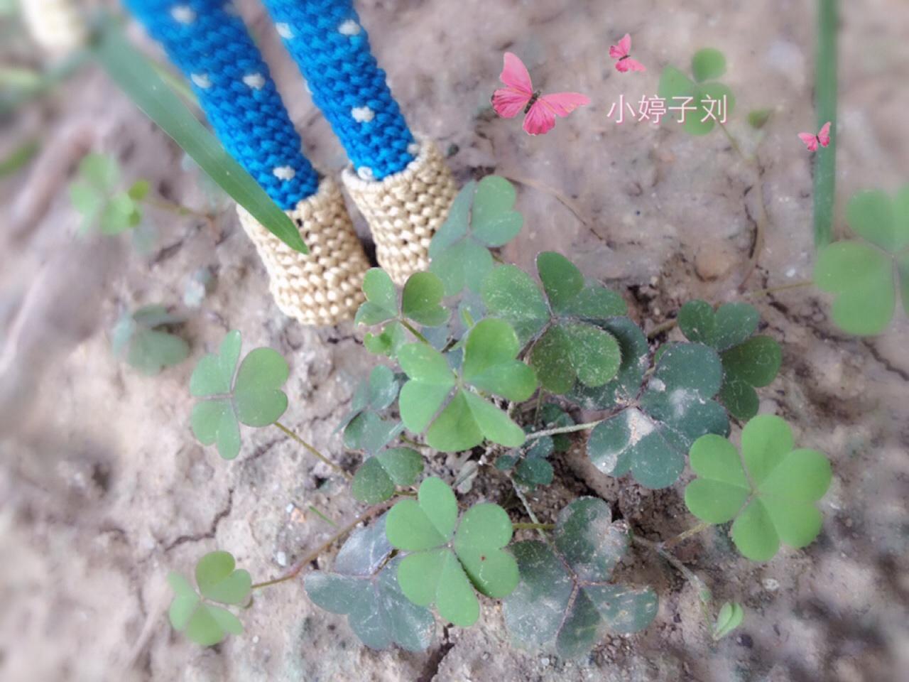 中国结论坛 小娃娃  立体绳结教程与交流区 212156c787dhhm77gemeph