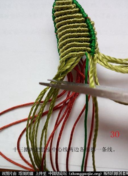 中国结论坛 蝈蝈的编法  立体绳结教程与交流区 154340sogdymfqdrafi7fs