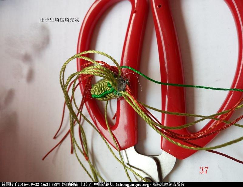 中国结论坛 蝈蝈的编法  立体绳结教程与交流区 154728z4qmk8x7icliv4ci