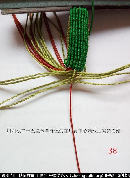 中国结论坛 蝈蝈的编法  立体绳结教程与交流区 154803msthjxdf89d5aaf9