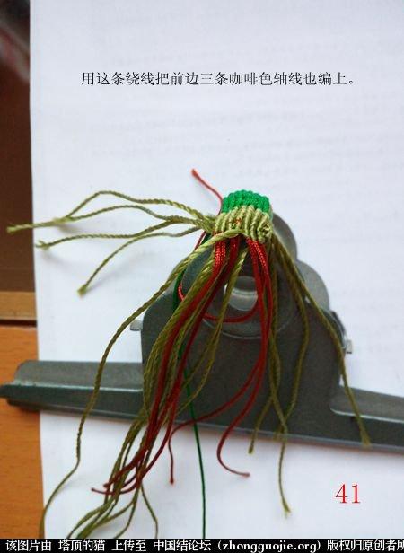 中国结论坛 蝈蝈的编法  立体绳结教程与交流区 155303jd3n1jnn3oebnkkh