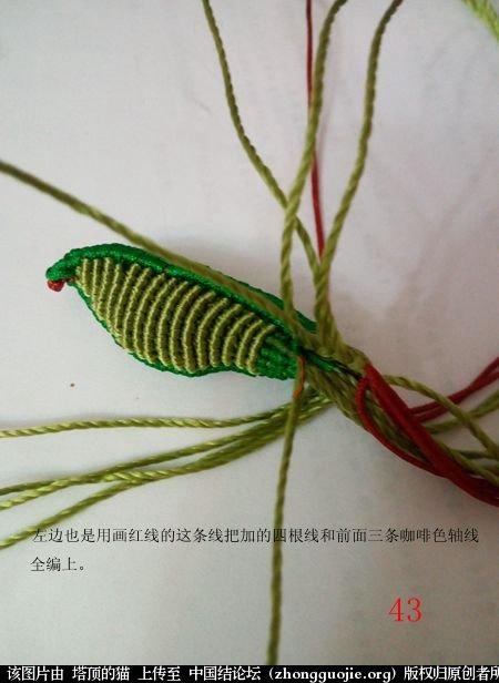 中国结论坛 蝈蝈的编法  立体绳结教程与交流区 155350gsamrke8dkmn6dzk