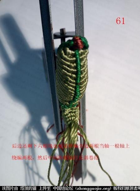 中国结论坛 蝈蝈的编法  立体绳结教程与交流区 160145ymyzous5zf7jjsxf