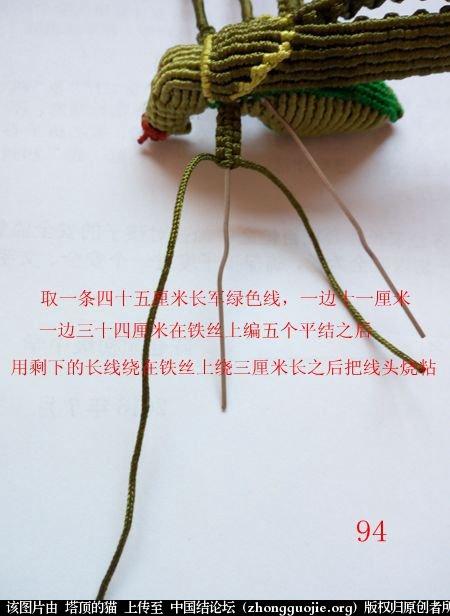 中国结论坛 蝈蝈的编法  立体绳结教程与交流区 161806xolpfr2sffczgfnp
