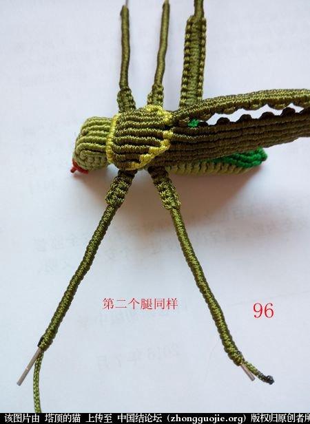 中国结论坛 蝈蝈的编法  立体绳结教程与交流区 161855rro12p8d2rd24tho