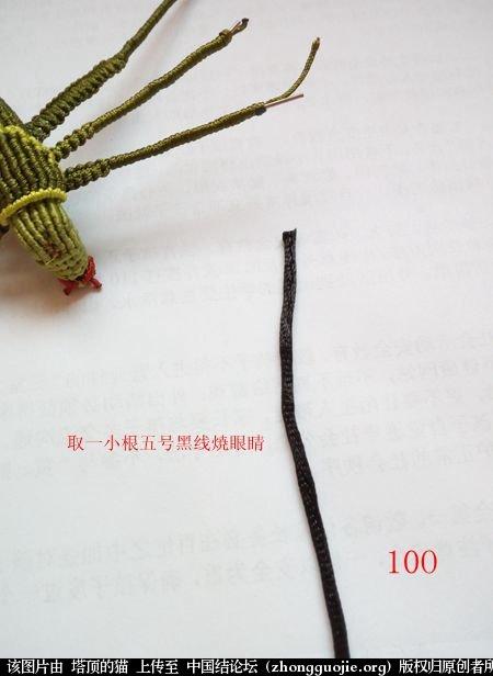 中国结论坛 蝈蝈的编法  立体绳结教程与交流区 162049er7lkdkd2p3b4ct1