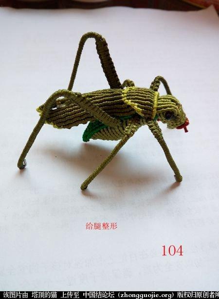 中国结论坛 蝈蝈的编法  立体绳结教程与交流区 162220fvv02iecvnnh0nw0