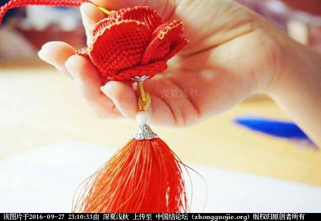 中国结论坛 玫瑰  作品展示 231033tee9z6nhoz9b08sn