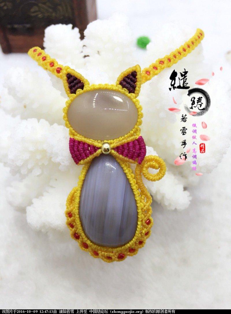 中国结论坛 猫趣  作品展示 124713xp5p5pdpd55s5lq0